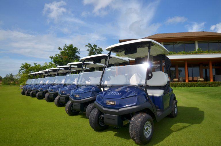 Visage GPS Golf Cart